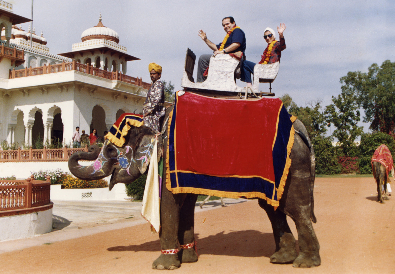 Justices Scalia and Ginsburg riding an elephant.