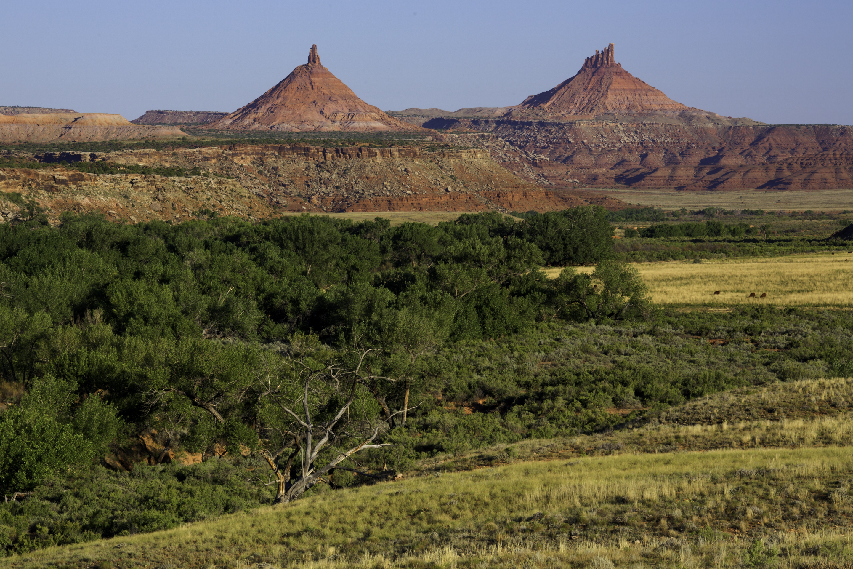 Presidential Authority and the Antiquities Act