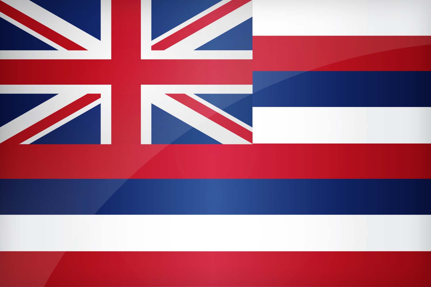State Court Docket Watch: In Re Individuals in Custody of the State of Hawai'i