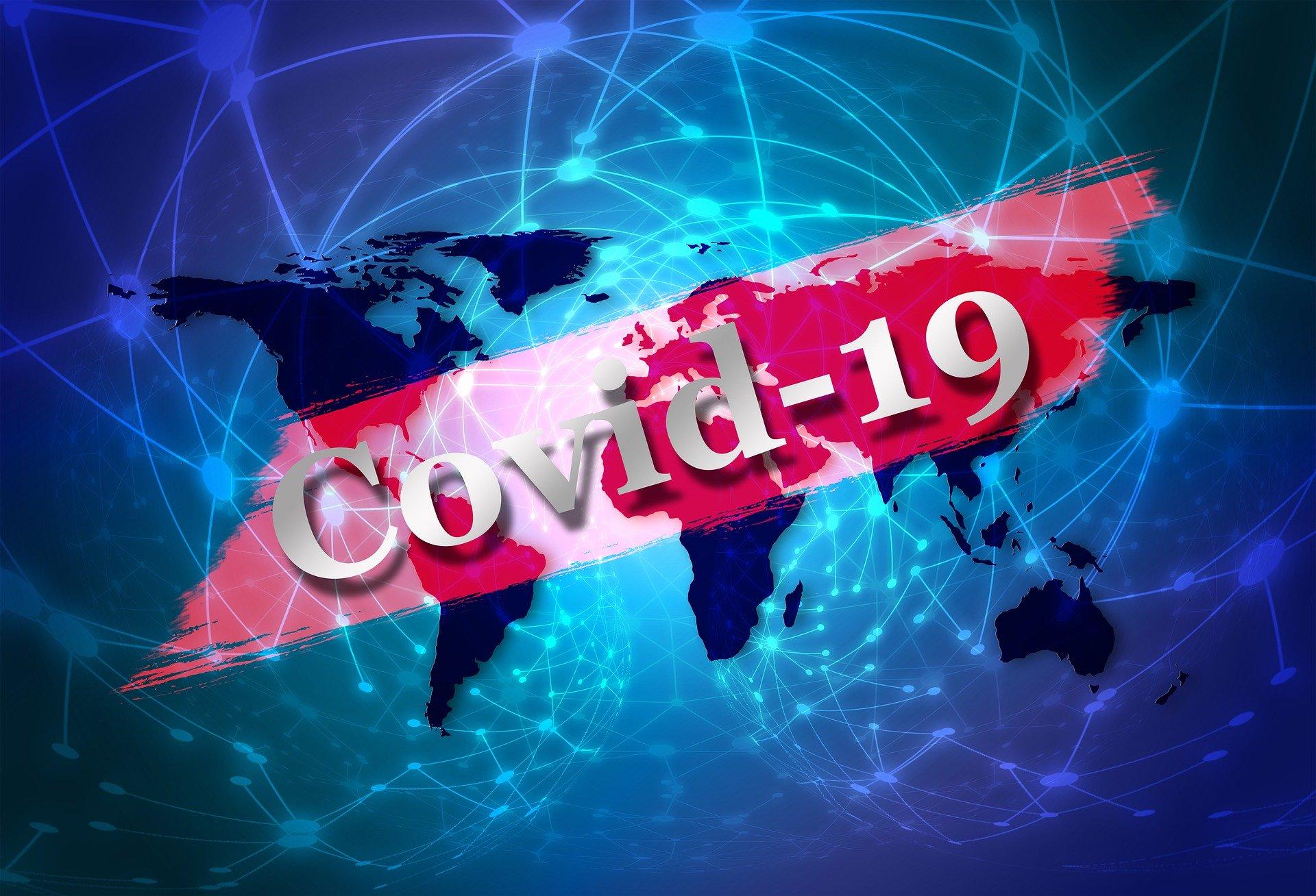 Executive Power v. Coronavirus