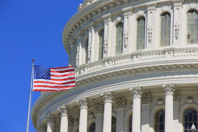 Balancing Executive and Legislative Branch Interests in Congressional Oversight