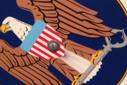 Debate: Does the NSA's Mass Phone Data Collection Violate the Fourth Amendment?