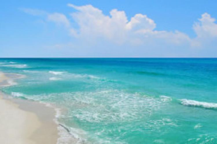 Hot Topics in Class Action Reform: The BP Deepwater Horizon Case