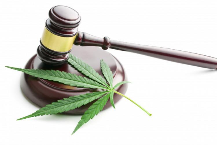 Justice Department and Marijuana Enforcement