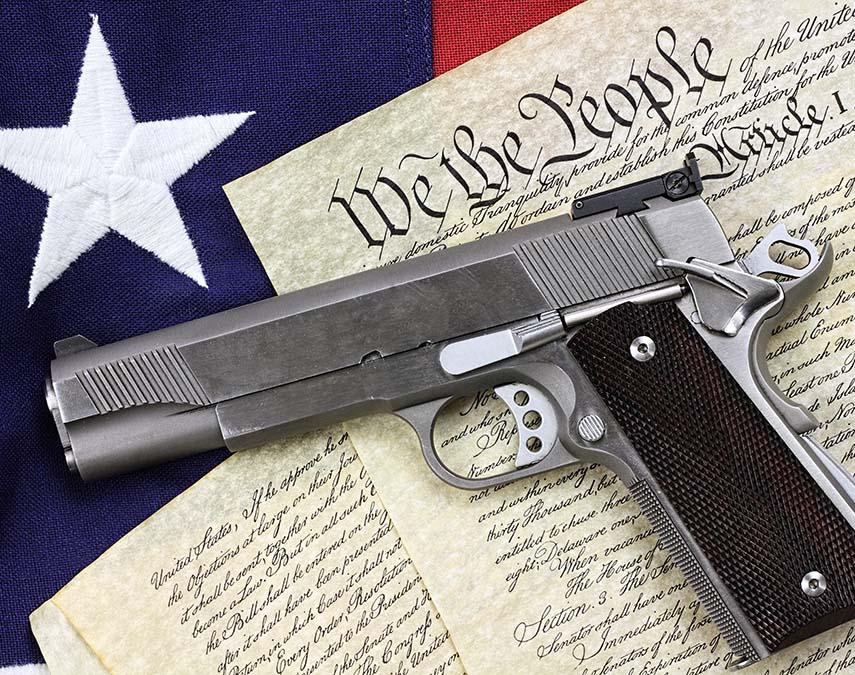Second Amendment: Next Steps in the Unfolding Litigation Battle